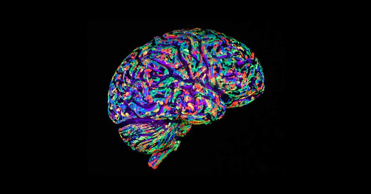 Curso Online Neuroventas con PNL